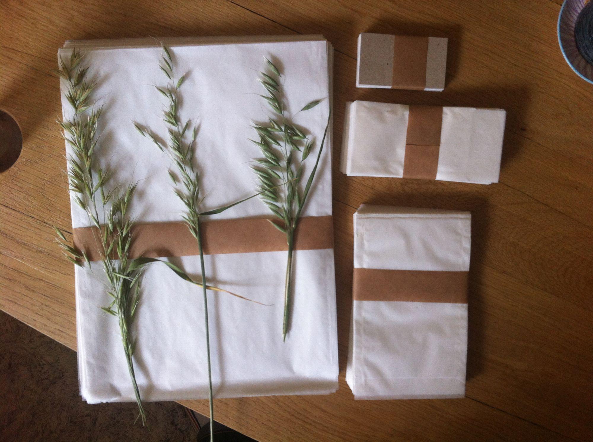 Blog: Zaden verzamelen